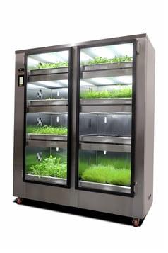 GardenChef Microgreens